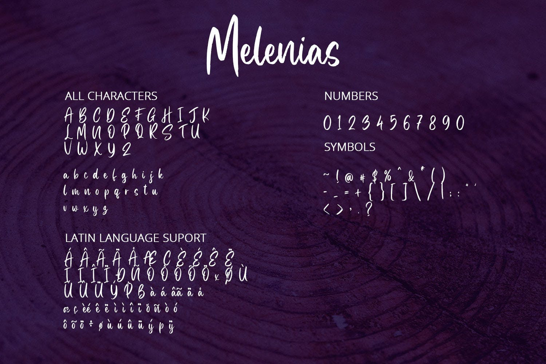 手写英文字母字体合集 Melenias – Casual Brush Font设计素材模板