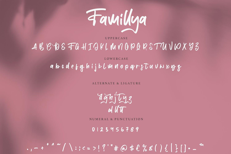 创意涂鸦英文手写字体素材合集 Famillya | Handwritten Font设计素材模板