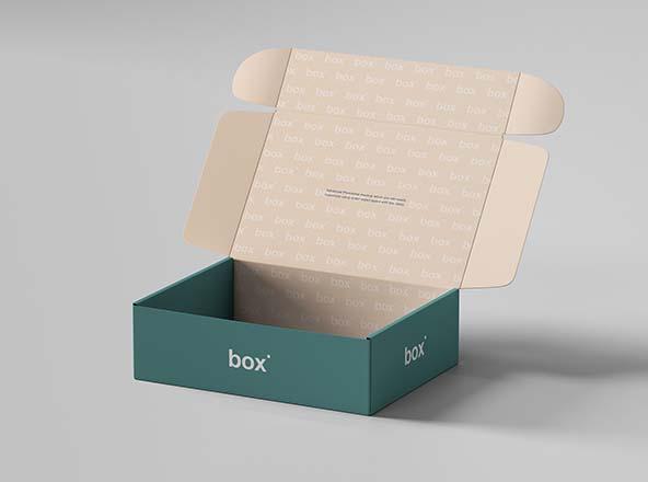 鞋盒包装设计样机模板素材 Pinch Lock Box Mockup