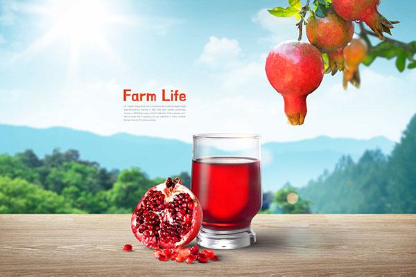 石榴水果&果汁广告psd模板