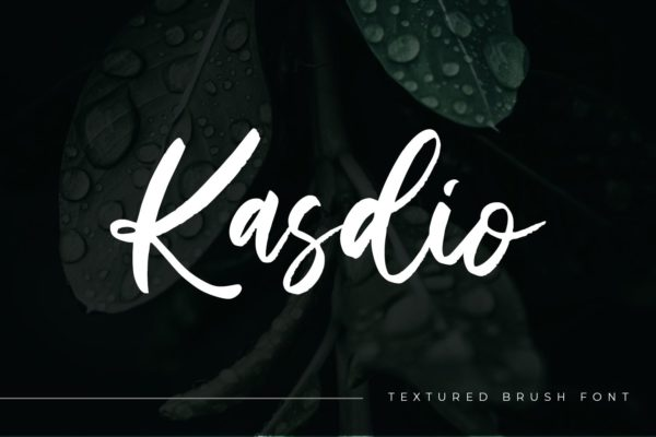 手写风格英文笔刷字体合集 Kasdio – Casual Brush Font