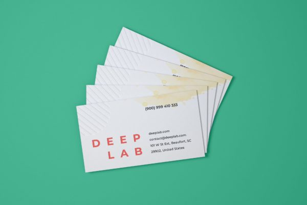 企业品牌名片设计样机模板 Business Card Mockup