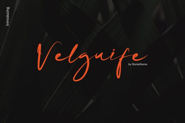 优雅简单的英文手写广告字体素材 Velguife Script Font