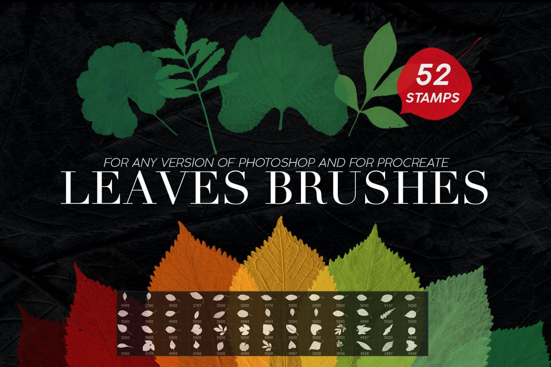 PS印章树叶图形笔刷合集 52 Leaves Photoshop Stamp Brushes设计素材模板