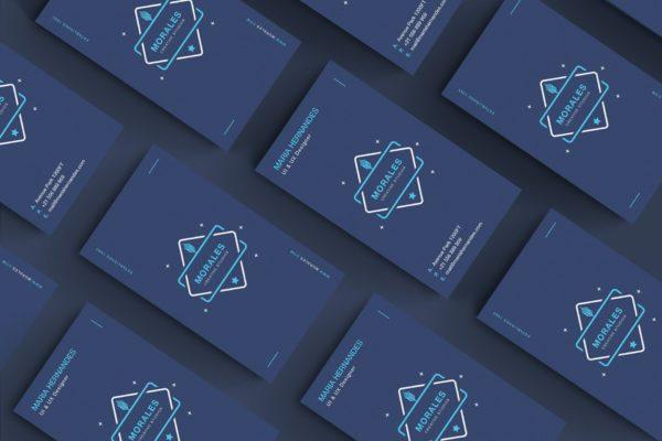 品牌VI创意设计公司名片模板 Business Card