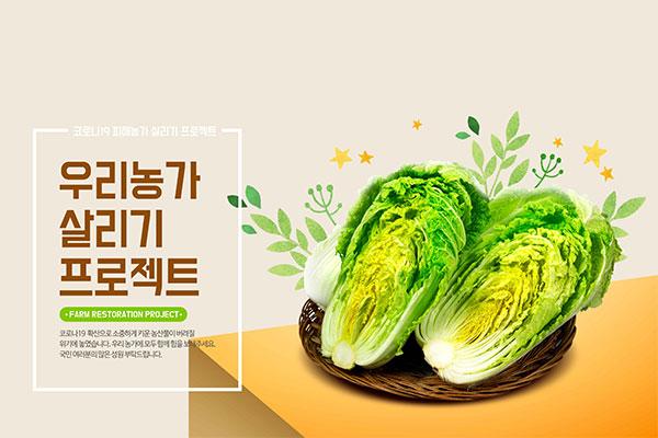 农产品大白菜宣传广告海报设计模板