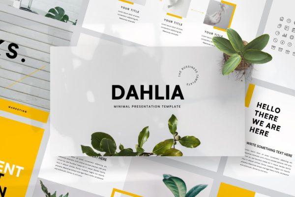 白色背景极简布局设计PowerPoint模板 Dahlia – Powerpoint Template