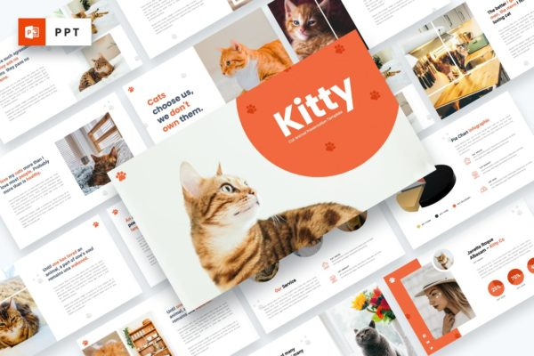 宠物店PPT介绍幻灯片模板 Kitty – Cat Animal Powerpoint Template