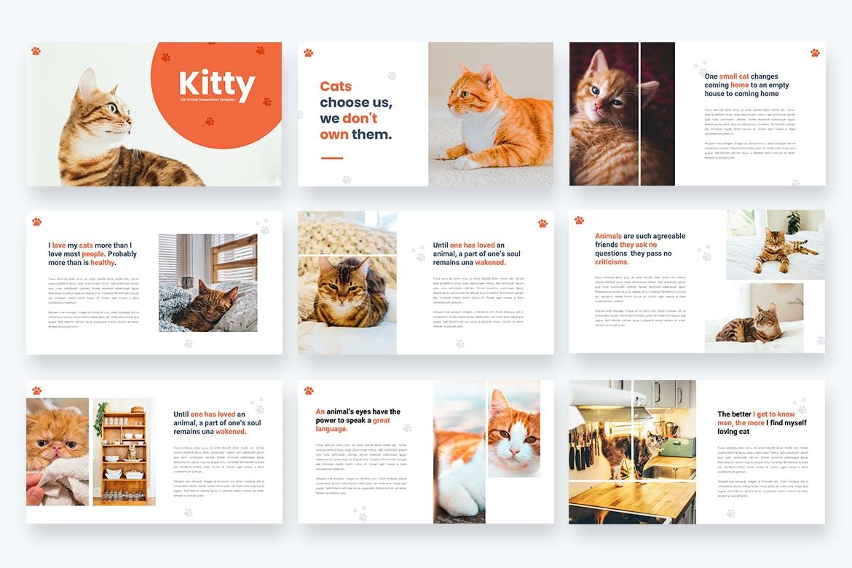 宠物店PPT介绍幻灯片模板 Kitty – Cat Animal Powerpoint Template设计素材模板
