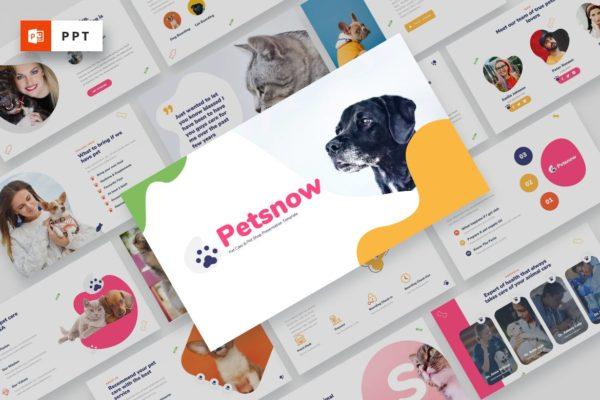 宠物护理/宠物店Powerpoint模板合集 Petsnow – Pet Care & Pet Shop Powerpoint Template