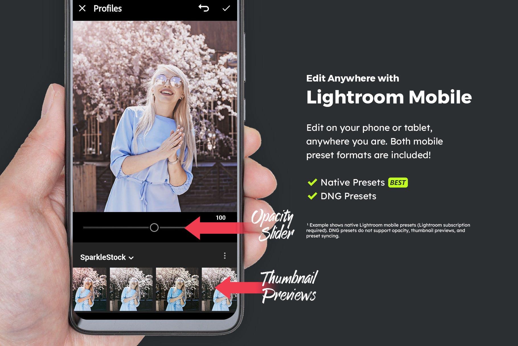 LR蓝色调色预设电影级摄影效果处理 20 Blueberry Lightroom Presets & LUTs设计素材模板