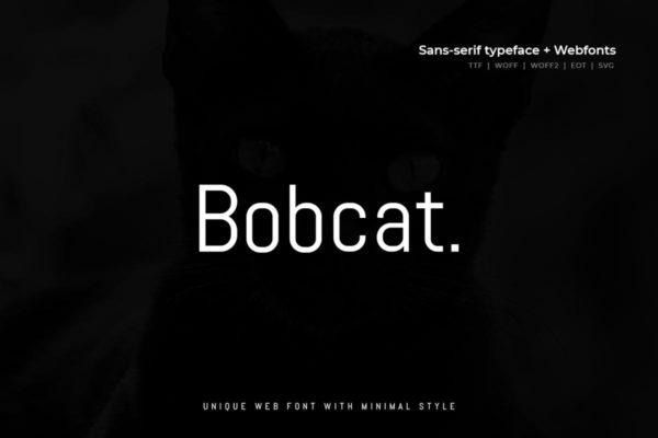 极简现代稳重猫系设计无衬线字体 Bobcat – Modern Typeface + WebFont