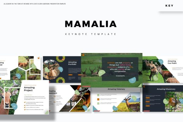 Keynote演示文稿鹿科哺乳动物 Mamalia – Keynote Template