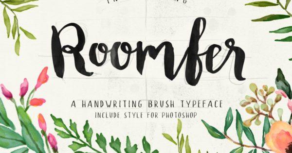 手写英文趣味粗体字体合集 Roomfer font + Style Photoshop