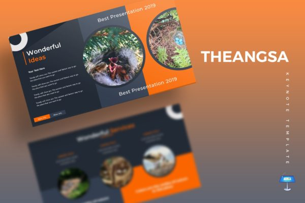 Keynote鸟类繁殖主题幻灯片设计模板 The Angsa – Keynote Template